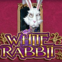 white rabbit slot not blocked by gamstop